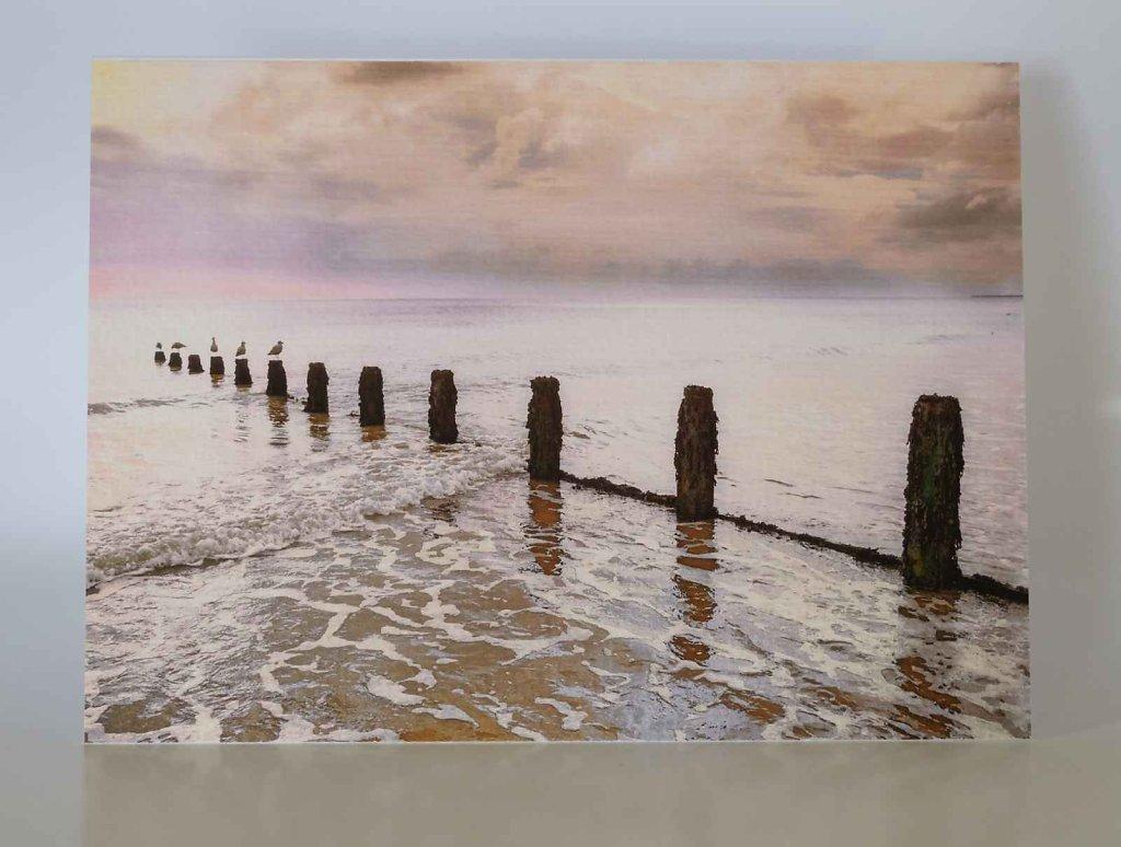 Weathered-sea-groyne-greetings-card.jpg