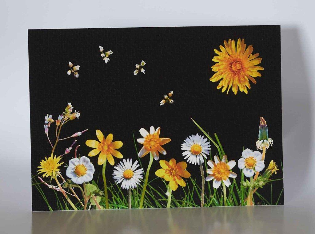 Spring-Flowers-greetings-card.jpg