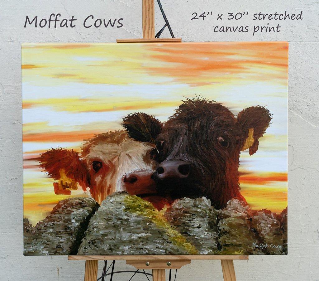 moffat-cows-24-x-30-canvas.jpg