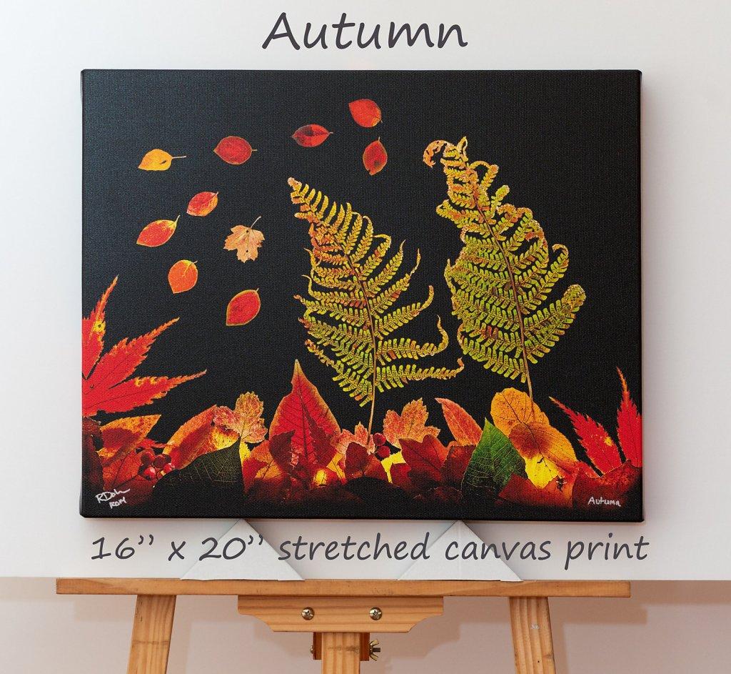 autumn-16-x-20-canvas.jpg